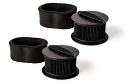 Green Label 2 Pack for Bissell Filter Kit 32R9. Circular Upr